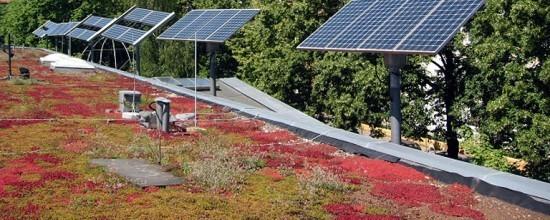 Solaranlage auf dem Gründach der ufaFabrik
