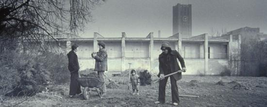 Aufräumarbeitenauf der Sommerwiese im Herbst 1979